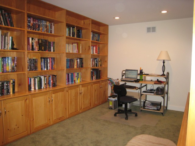 new library from the living room door (my desk)