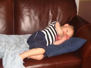 Teddy Sleeping on Sofa