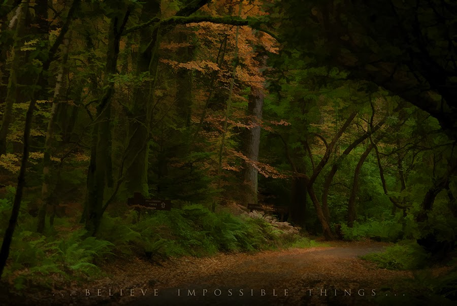 Гленгарский лес мне товарищ