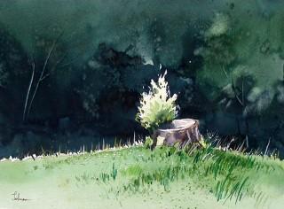 """""""Rebirth"""" Watercolor, 9 x 12"""""""
