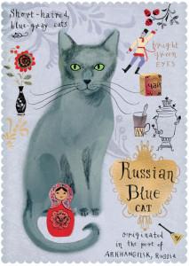 Kot-rosyjski-niebieski_width400_3.jpg