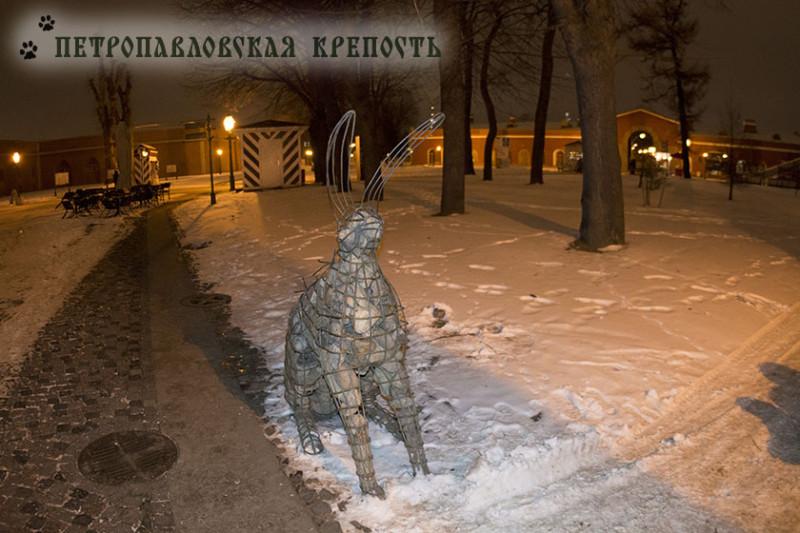 заяц в петропавловской крепости