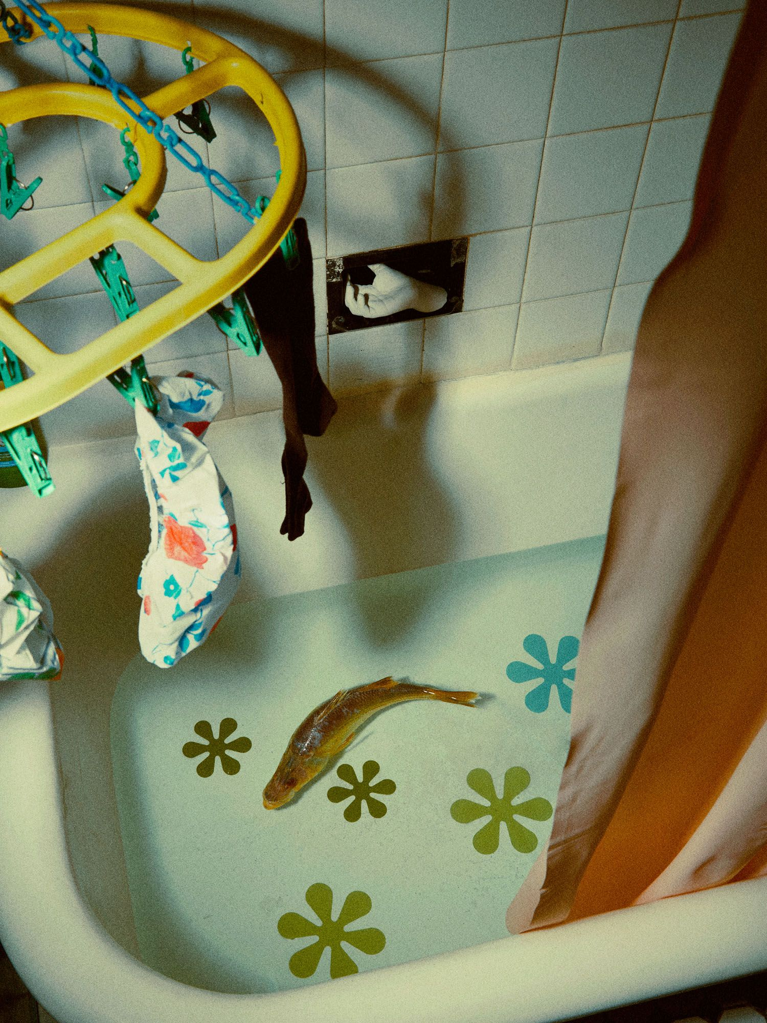 """""""If you want to take a bath, do it today; I'm bringing the carp tomorrow and it lives in the tub till Easter,' said Natalia helpfully. WAIT. Easter is three months away."""""""