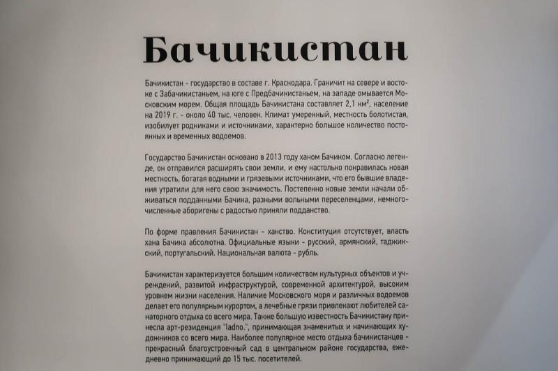 Юля Шафаростова. «Бачикистан»