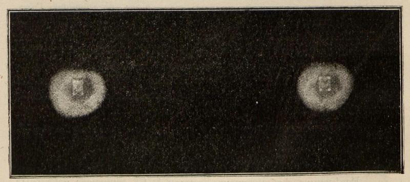 Изображение получено Инглес Роджер при смотрении сперва на почтовую марку, а затем на пластинку. 1896г.