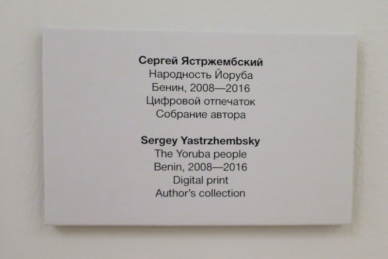 на выставке Сергея Ястржембского «АФРИКА: ZOOM IN / ZOOM OUT»