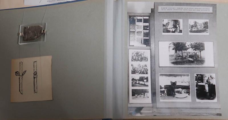 Альбом Центральная станция юннатов. 1950-е. Федеральный центр дополнительного образования и организации отдыха и оздоровления детей