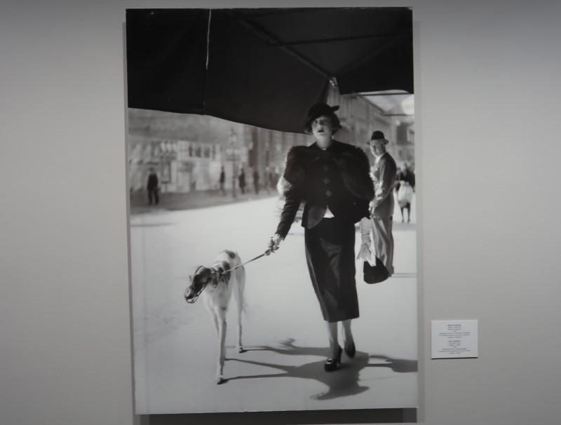 Джуро Янекович (Đuro Janeković). Дама с собачкой. Загреб. Хорватия. 1934г.
