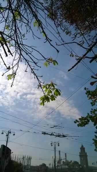 WP_20140821_012
