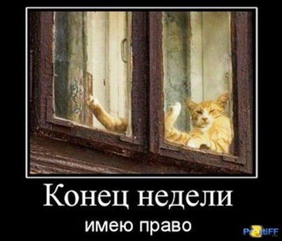 99385455_132301b3002ee79821fbb9c32ac61f8c_800