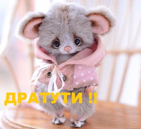 LQvmJq1iP_o