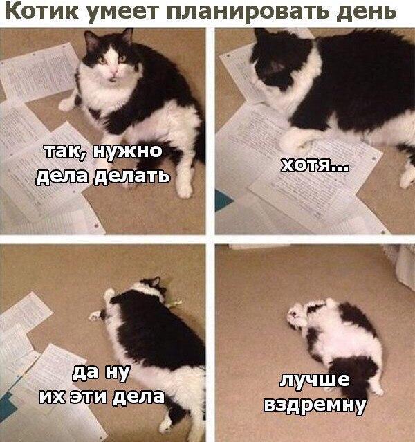 EFBpfReQkqM