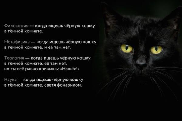 DzkQvhC9ZRw