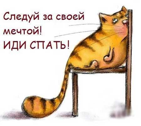 spat_pora_02