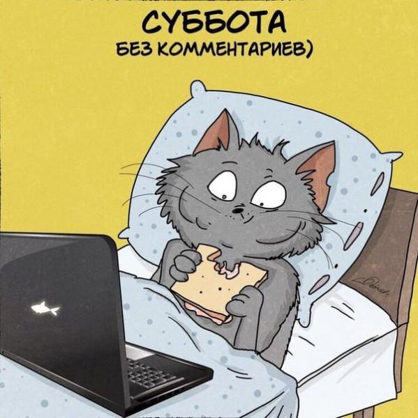 _CiBYpa2RPw