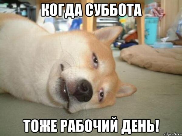 trenya_26552902_orig_