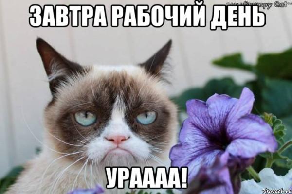 zavtra-na-rabotu--uraaa_23504921_orig_