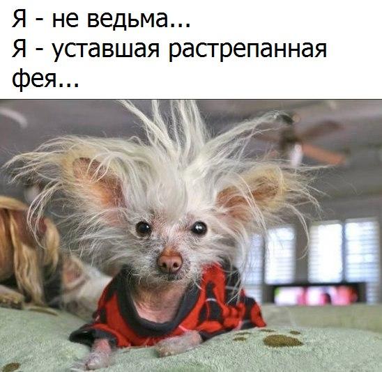 tcu8Rz_Nf4E