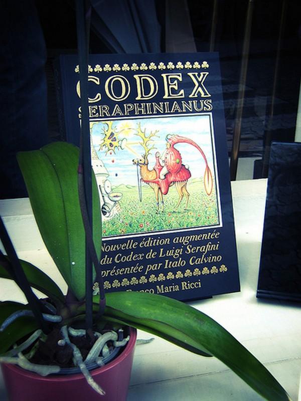 Codex seraphinianus - загадочная книга о выдуманном мире 1