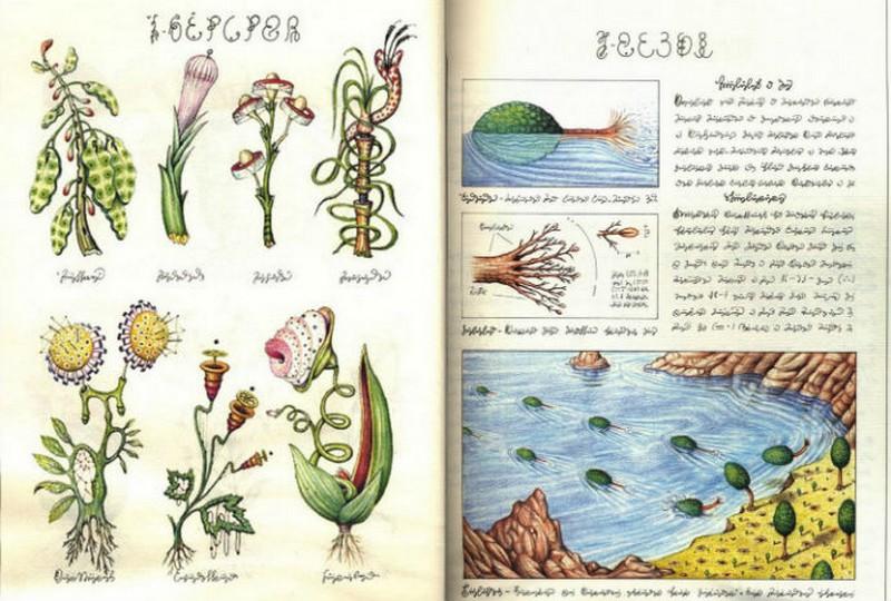 Codex seraphinianus - загадочная книга о выдуманном мире 3