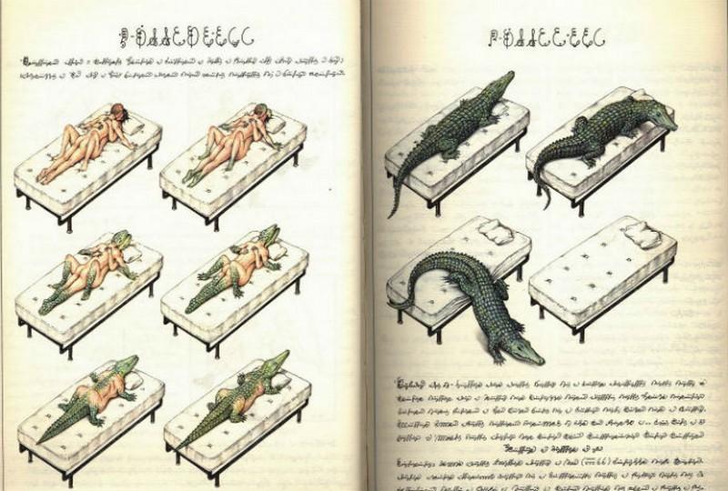 Codex seraphinianus - загадочная книга о выдуманном мире 4