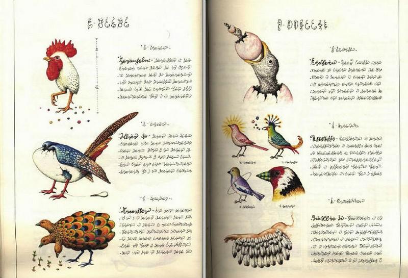 Codex seraphinianus - загадочная книга о выдуманном мире 6