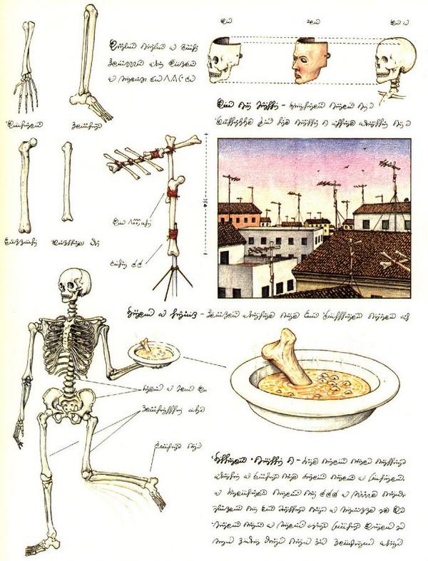 Codex seraphinianus - загадочная книга о выдуманном мире 10