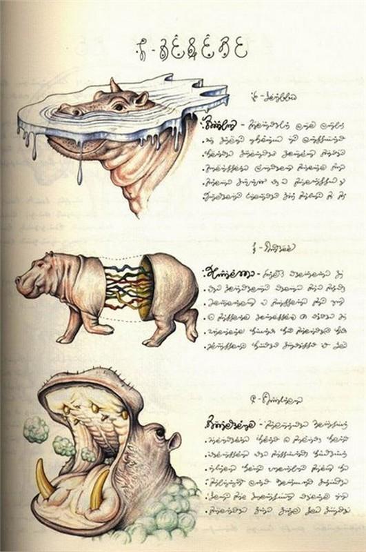 Codex seraphinianus - загадочная книга о выдуманном мире 13