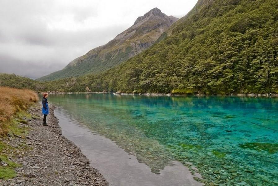Лесное озеро Rotomairewhenua - самое прозрачное в мире озеро 1