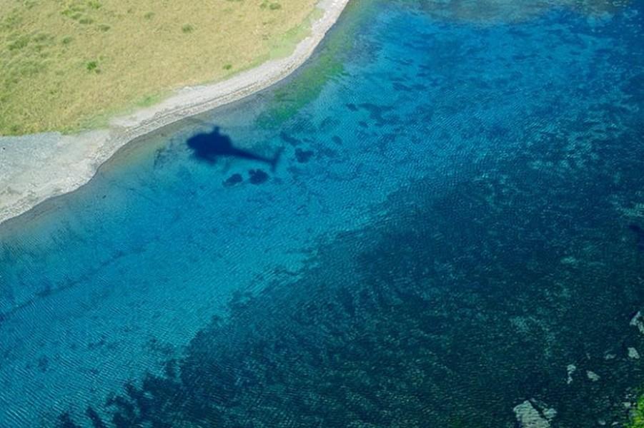 Лесное озеро Rotomairewhenua - самое прозрачное в мире озеро 5