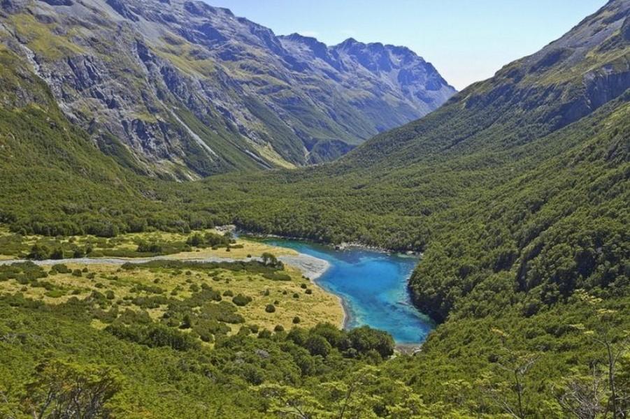 Лесное озеро Rotomairewhenua - самое прозрачное в мире озеро 7