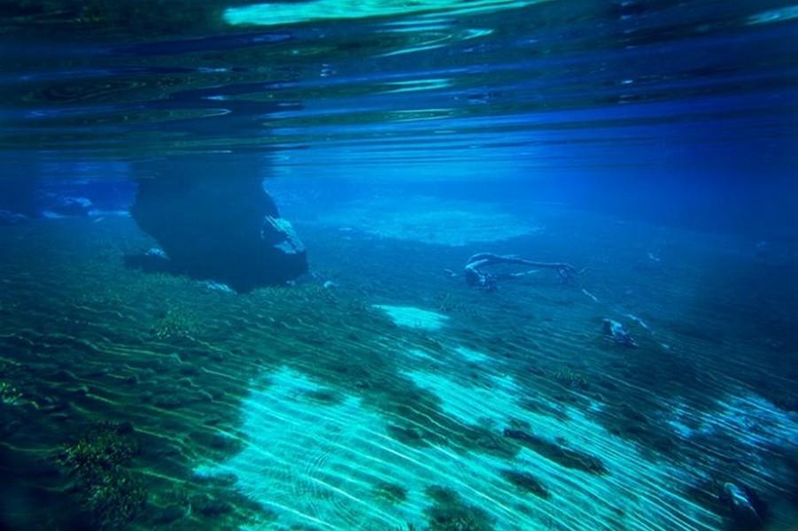 Лесное озеро Rotomairewhenua - самое прозрачное в мире озеро 8