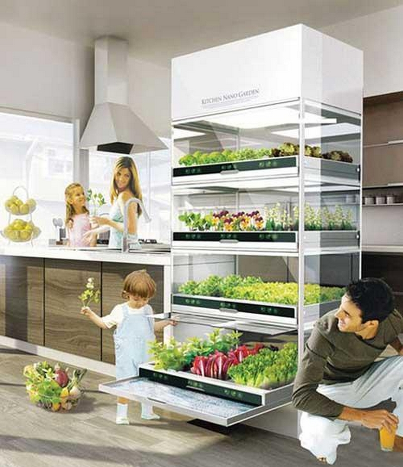 Гидропонный сад в вашем доме - это возможно уже сегодня 1