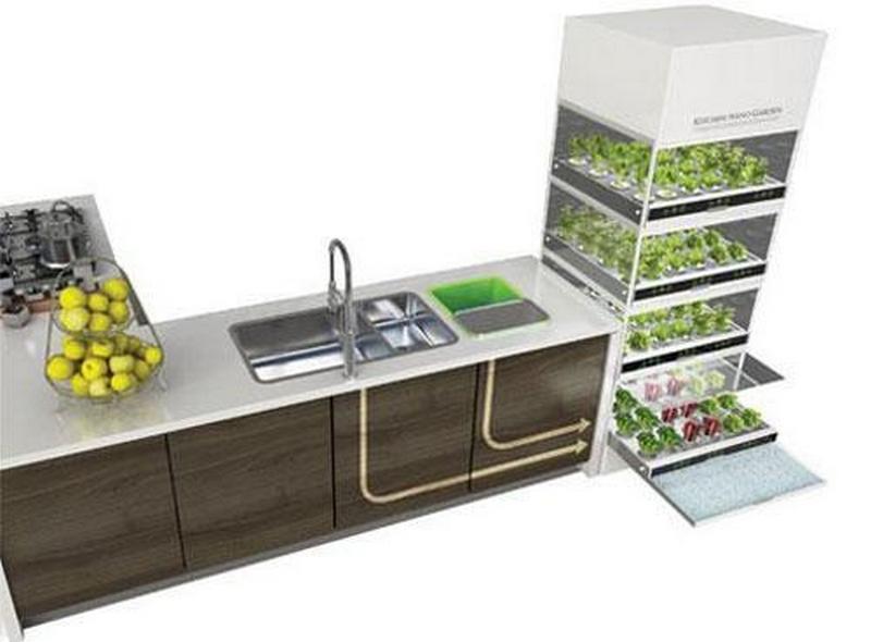 Гидропонный сад в вашем доме - это возможно уже сегодня 2