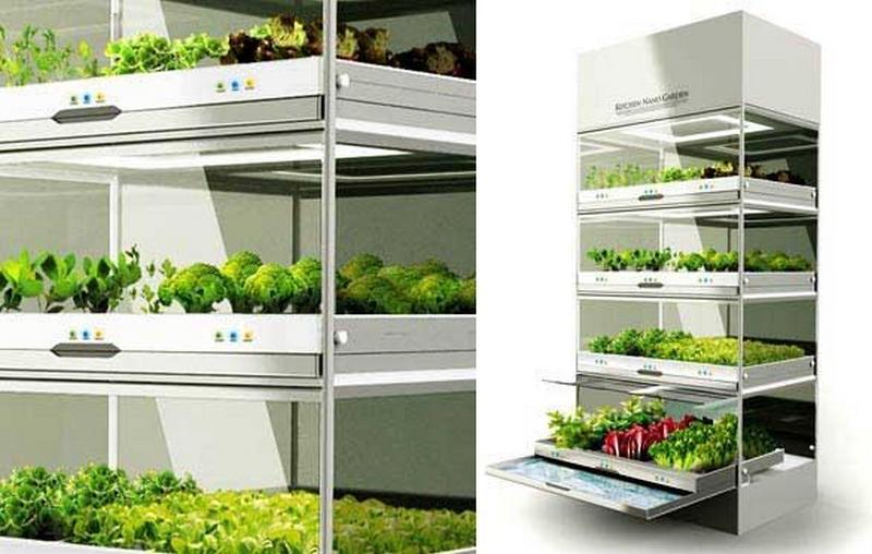 Гидропонный сад в вашем доме - это возможно уже сегодня 3