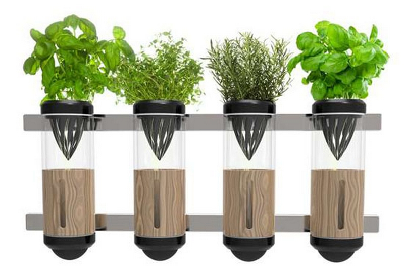 Гидропонный сад в вашем доме - это возможно уже сегодня 4