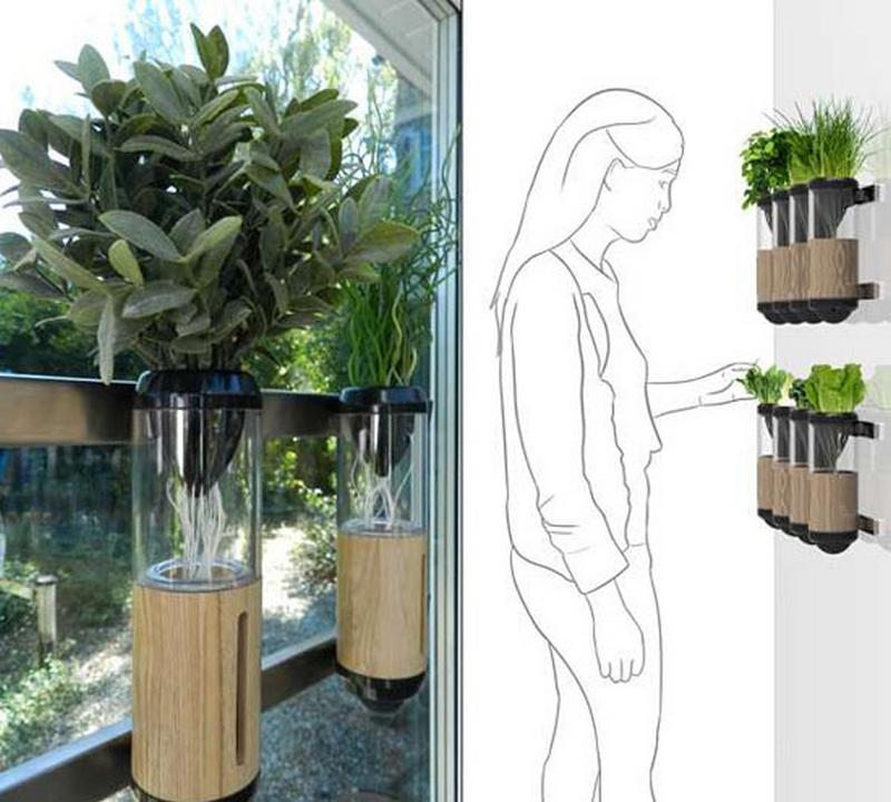Гидропонный сад в вашем доме - это возможно уже сегодня 7