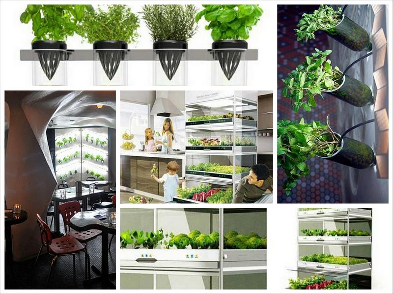 Гидропонный сад в вашем доме - это возможно уже сегодня