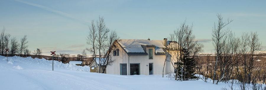 Интересный проект дома на горе 1