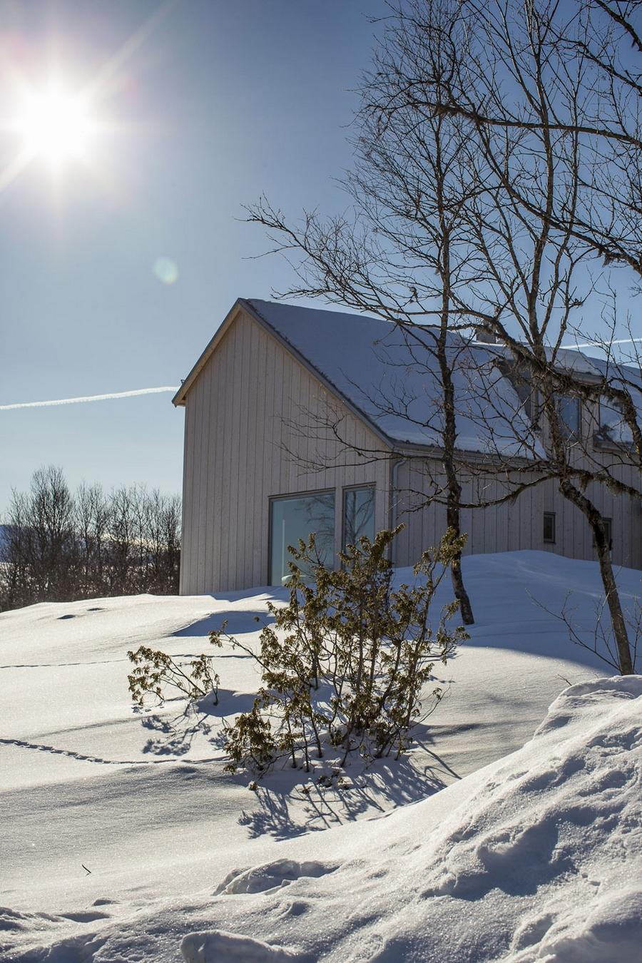 Интересный проект дома на горе 11