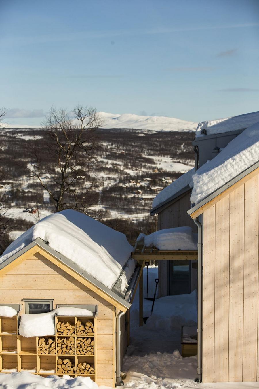 Интересный проект дома на горе 13