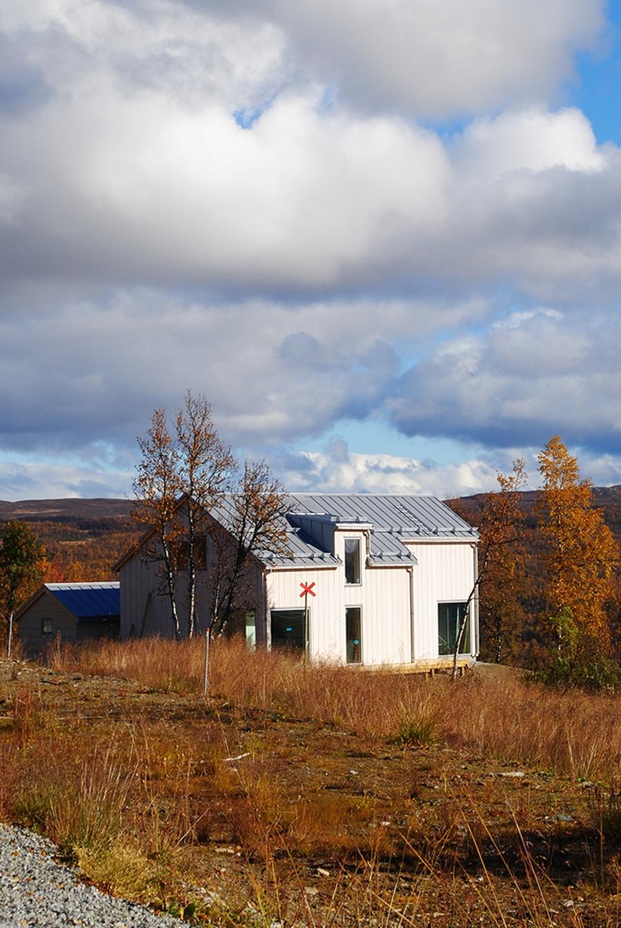 Интересный проект дома на горе 20