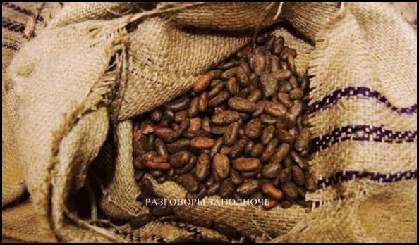 История возникновения шоколада