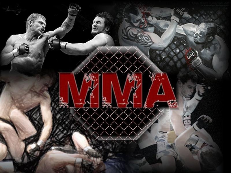 Экипировка борцов шорты mma и шлемы боксерские 9