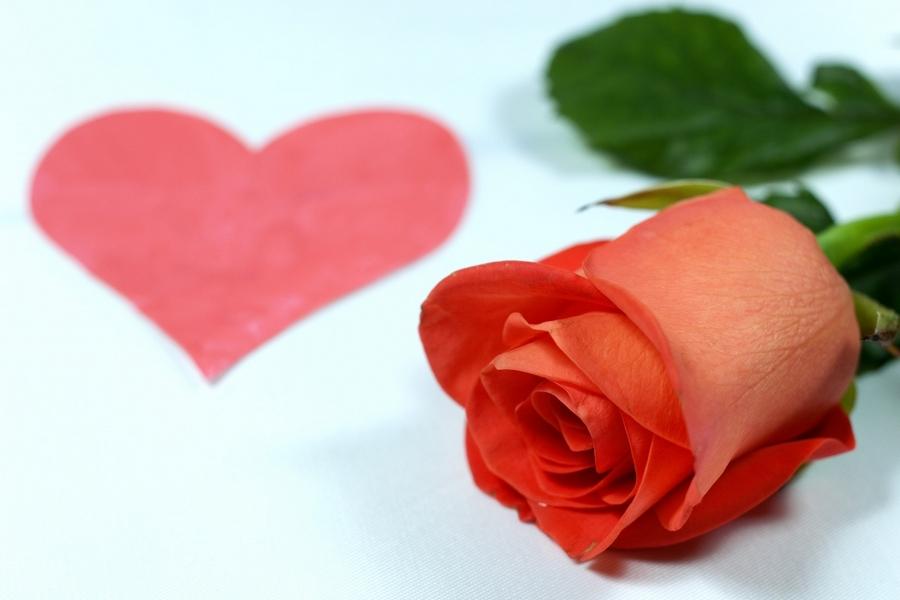 Подарки ко Дню Святого Валентина — правила выбора 11