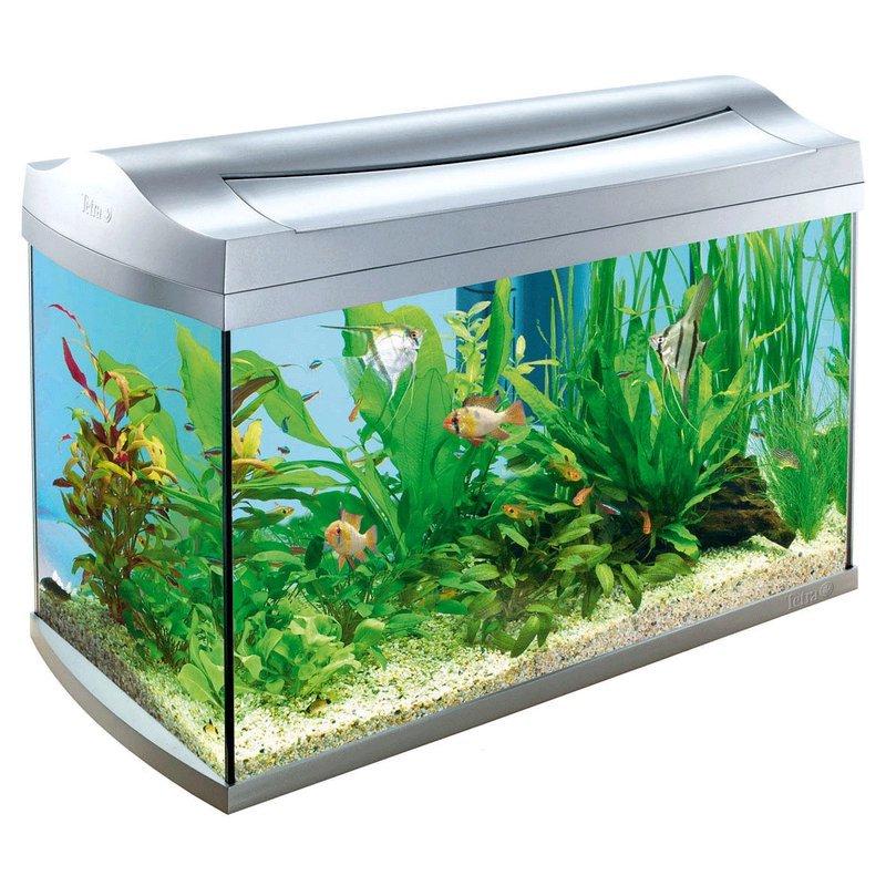 Виды аквариумов выбери идеальный вариант 7