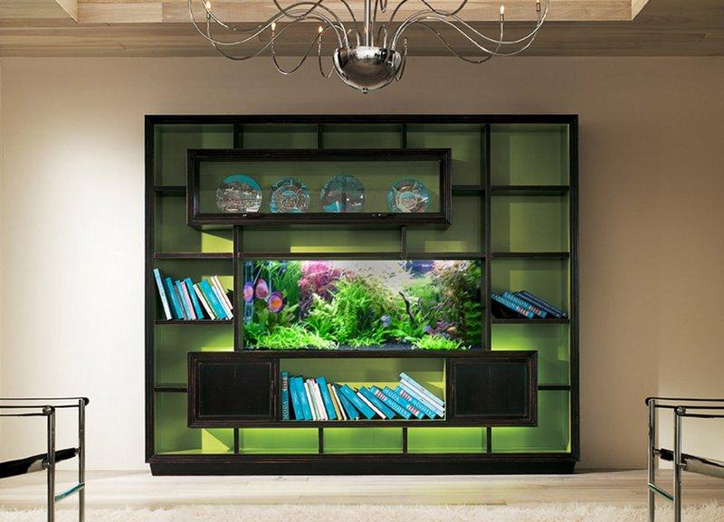 Виды аквариумов выбери идеальный вариант 10