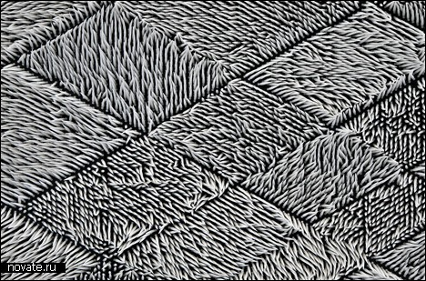 Ковер для рисования от Giles Miller