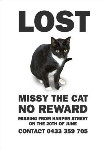 Пропала кошка! – история одной переписки секретарши и дизайнера