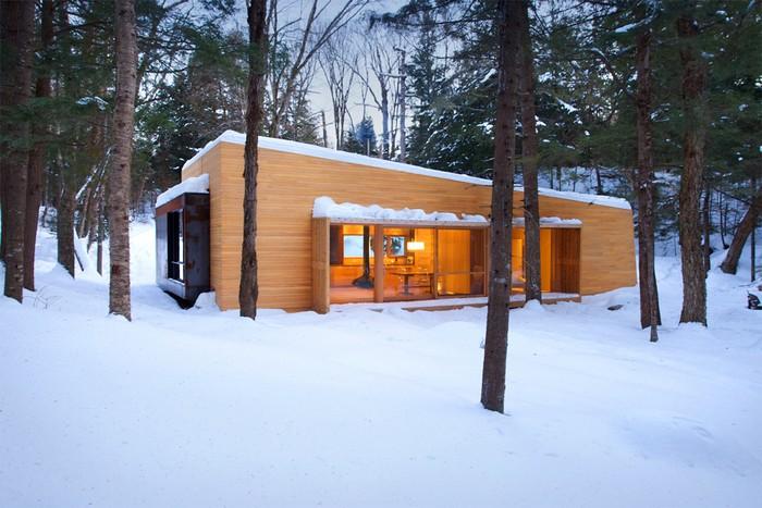 Дом из дерева посреди канадского леса 1